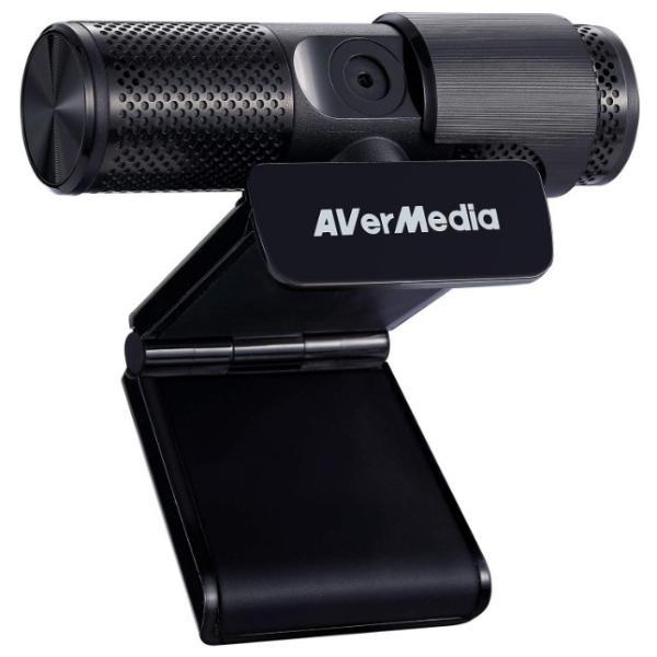 AverMedia Livestream 313